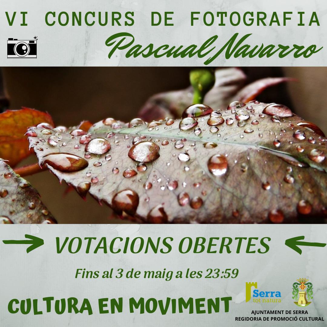Votacions obertes concurs de fotografia Pascual Navarro
