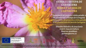 Visita plantació d'Estepa de cartagena