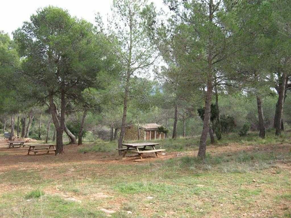 Àrea recreativa Aliguetes a Serra