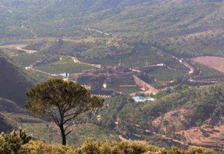 Vistes Cartoixa des del coll pobleta a Serra